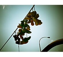 Sneakers Hanging On A Wire Photographic Print