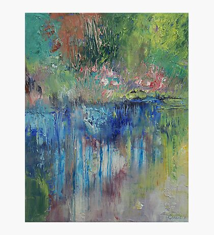 Willows Photographic Print