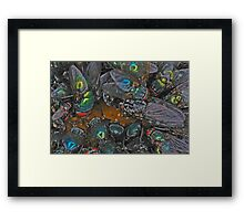 Bluebottles Framed Print