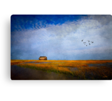 Salt Marsh Canvas Print