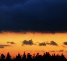 Treeline by emajgen