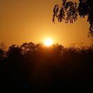 Sunrise In Senegal by Vulcha
