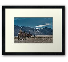 Camel Carvan in Nubra Valley-2/2011 Framed Print