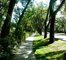 A Walk Down Wellington Cresent by mdkgraphics
