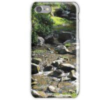 Rocks in a Stream iPhone Case/Skin