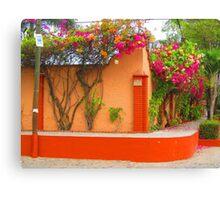 The coloured house - La casa de color  Canvas Print