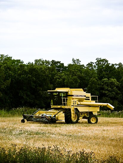 Old Yellow Combine 02 by mdkgraphics