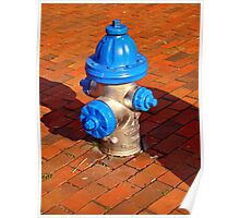 Silver and Blue Hydrant Poster