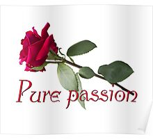 Pure passion Poster