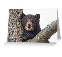 Cub in a tree Greeting Card