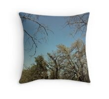 Tree Branches And The Sky Throw Pillow