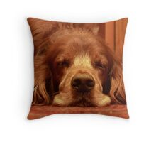 Let sleeping dogs lie. Throw Pillow
