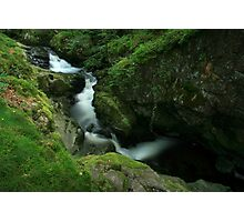 A Deep Green Ravine Photographic Print