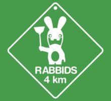 Rabbids in 4km Kids Clothes