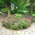 A Garden Somewhere by shelleybabe2