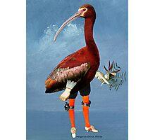I am your bird Photographic Print
