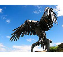 heavy metal eagle Photographic Print