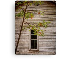 Lead Glass Window Canvas Print