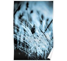 Black and White Wheat germ grass Poster