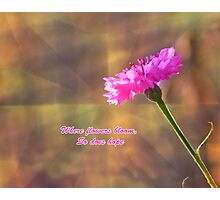 Where Flowers Bloom So Does Hope Photographic Print