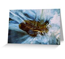 Crushing water onto rock by Colleen Stevenson  Greeting Card