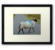 Irish Traffic Hazard Framed Print