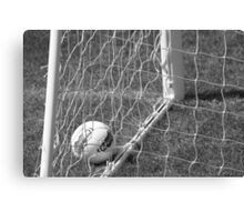 Netting The Win Canvas Print
