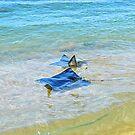 Mating Manta-ray #1 by Carl LaCasse