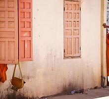 Cambodge - Une vie de moine by Jean-Luc Rollier