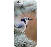 Jaybird iPhone Case/Skin