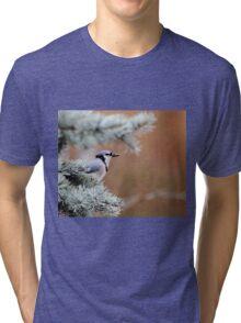 Jaybird Tri-blend T-Shirt