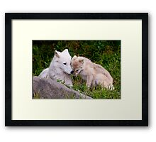 Touching Moment Framed Print