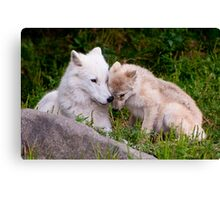 Touching Moment Canvas Print