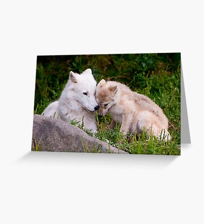 Touching Moment Greeting Card