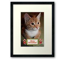 Merry Christmas Kitty Framed Print