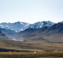Braided River with McKinley, Denali National Park  by Bob Moore
