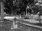 Resting in the Shade - Marietta City Cemetery by Scott Mitchell