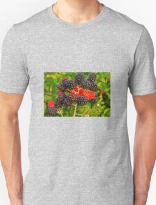Fruit T-Shirt