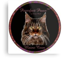 Purrrfect Paws™ Maine Coon Metal Print