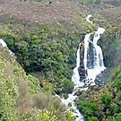Waipunga Falls, New Zealand by Margaret  Hyde