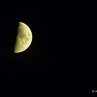The moon 4/9/11  by Photos - Pauline Wherrell