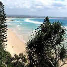 Looking to Coolangatta by Nicki Baker