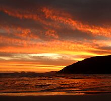 Copper Sunset at Norman Bay by ShineArt