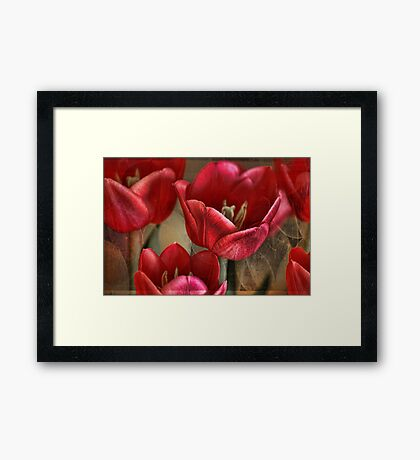 Tulip Abstract Framed Print