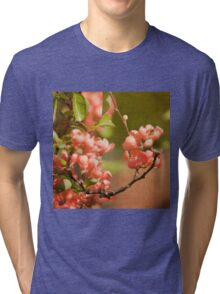 Orange Blooms Tri-blend T-Shirt