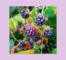 How to make Bramble Jelly by ©The Creative  Minds