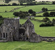 Hore Abbey, cashel by Nicola Lee