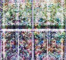 P1440795-P1440797 _XnView _GIMP by Juan Antonio Zamarripa