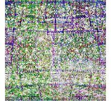 P1440881-P1440882 _XNVIEW _GIMP Photographic Print