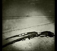 Remains of a World War II Tank - Titchwell, Norfolk, UK by Richard Flint